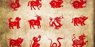 Horoskop na tento týden: Vepře čeká milostné jiskření, Draky úspěch v práci