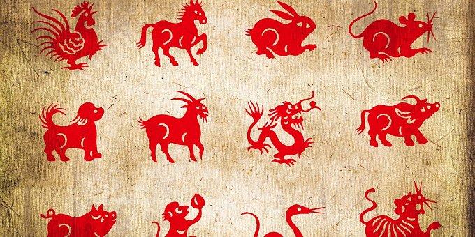 Horoskop na tento týden: Tygry čeká nový začátek, Zajíce tučné výdaje