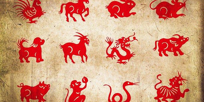 Horoskop na tento týden: Krysy čeká láska, Psy náročnější období