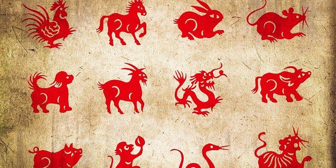 Horoskop na tento týden: Opicím se zadaří při studiu, Zajícům v lásce