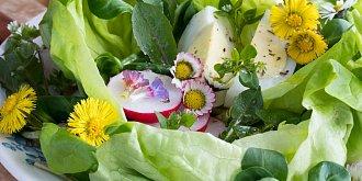 Recepty s ředkvičkami: Dejte si smaženici, polévku či pomazánku