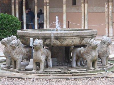 Detail lvů