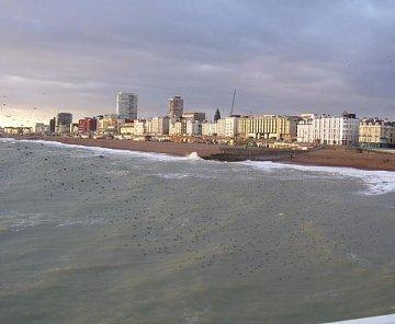 Brighton,London