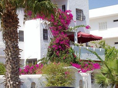 Nabeul, Tunisko (nahrál: mirunka)