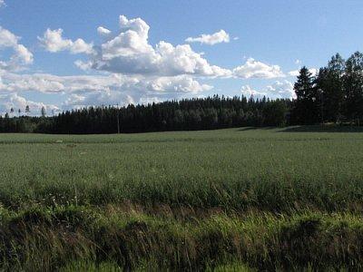 Finská krajina (nahrál: admin)