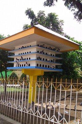 Ptačí příbytek (nahrál: admin)