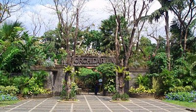 Orchid Garden (nahrál: admin)
