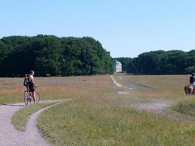 park Jaegersborg Dyrehavn (nahrál: Lenka Hoblíková)