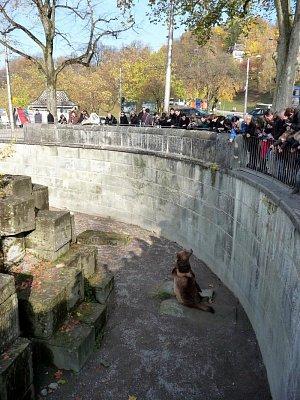 Bärengraben (nahrál: Petr Nedbal)