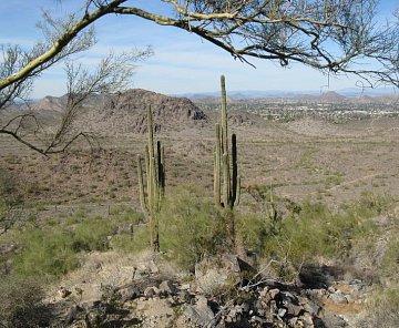Arizona/Nevada 2009-2010