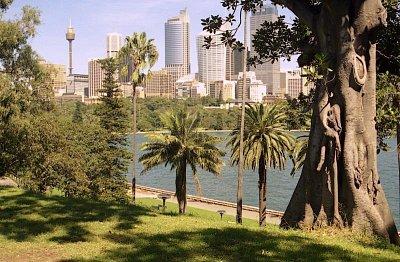 Silueta Sydney Tower - Pohled od Mrs Macquairies Point (nahrál: Luboš)