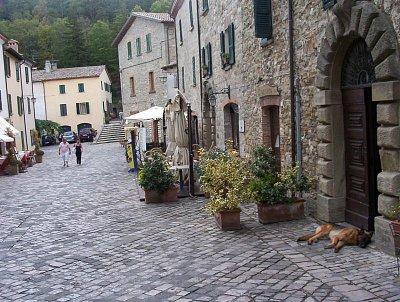 Via Micele Rosa - Tak tady chcípnul pes. (nahrál: Leoš Kobr)