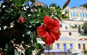 Řecko Symi 2010