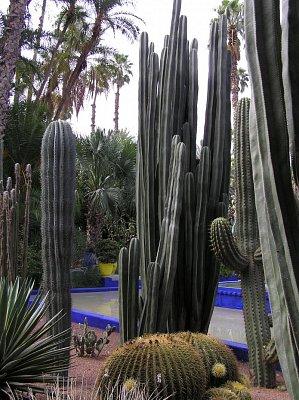 V záhrade v Marakeši (nahrál: Malíková Margita)