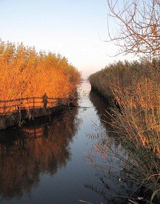 Hortobágy - rybníky (nahrál: Šárkaa)