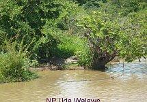 Srí Lanka soukromě