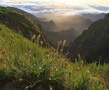 Madeira květen 2014