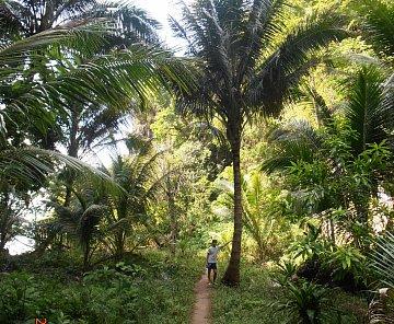 THAJSKO - KRABI -vylet na ostrovy KoHOng