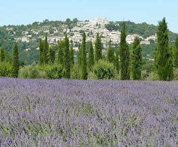 Francie - Provence 2012