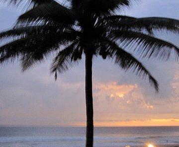 Ráj na zemi... Srí Lanka 2009 kogalla