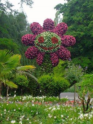 Květinový ostrov Mainau - čas růží