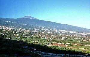 Tenerife 2011 - Puerto de la Cruz