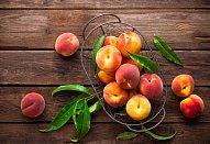 Galetka s letním ovocem