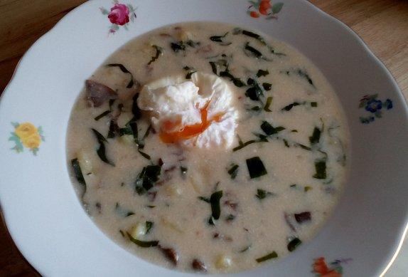 Smetanová polévka s medvědím česnekem