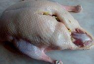 Kachna s nádivkou z remosky