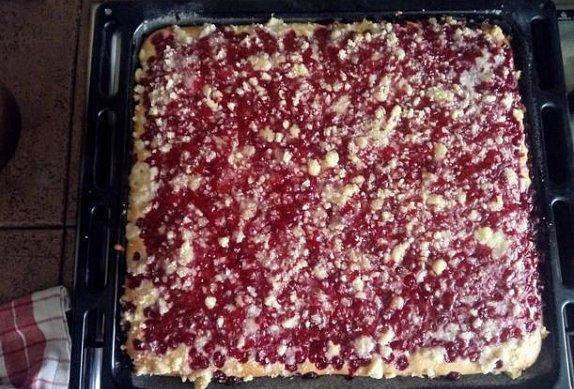 Rybízový koláč II.