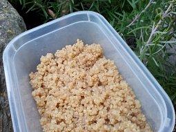 Quinoa - jako příloha nebo zavářka do polévek