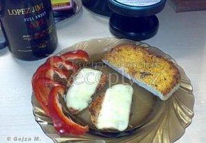 Krůtí medajlonky se sýrem