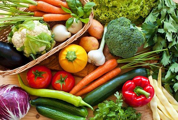 Tudelská zeleninová polévka