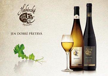 Prestižní Salón vín ČR ocenil vína z Habánských sklepů