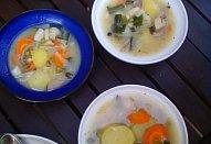 Kotlíkova polévka z hlívy