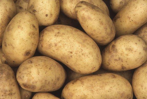Zapečené brambory se smetanou a parmazánem