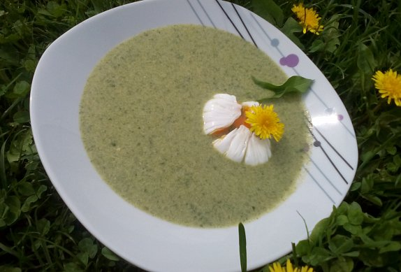 Pampelišková polévka od Lidušky photo-0