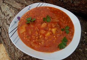 Gulášová polévka z hlívy s ovesnými vločkami