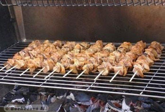 Kuřecí špízy na gril