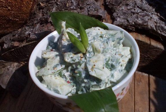 Okurkový salát s medvědím česnekem